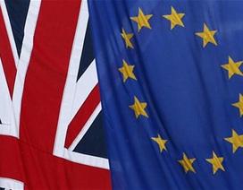 Hội nghị EU về tương lai của nước Anh