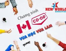 Chương trình thực tập Co-op Canada hút du học sinh quốc tế cùng visa ưu tiên 2017