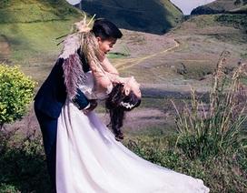 Ảnh cưới thơ mộng trên cánh đồng cúc tím Mộc Châu