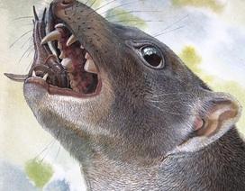Phát hiện loài động vật có túi ăn thịt kỳ dị cách đây khoảng 15 triệu năm