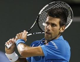 Djokovic chạm mặt hiện tượng Goffin ở bán kết