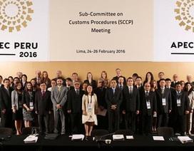 Khai mạc APEC: Tổng thống Peru kêu gọi chống chủ nghĩa bảo hộ