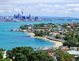 Khám phá Auckland tươi đẹp thật dễ dàng