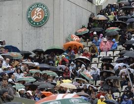 Djokovic, Murray không được thi đấu vì mưa