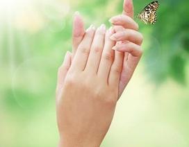 Cấu tạo kỳ diệu của đôi bàn tay
