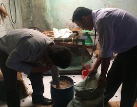 Dùng hóa chất Trung Quốc, chỉ cần 48 tiếng giá đỗ mọc đầy thùng