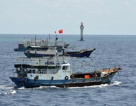 Nguy cơ xung đột vì tranh nguồn cá ở biển Đông