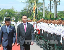 Lễ đón chính thức Chủ tịch nước Trần Đại Quang tại Brunei
