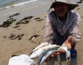 """Formosa nhập 400 tấn hóa chất: Bộ Công thương """"đá"""" trách nhiệm cho Bộ Tài nguyên Môi trường!?"""
