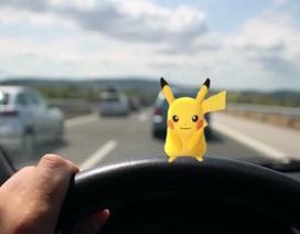 """""""Hãy nhìn đường, quên Pokémon đi!"""""""