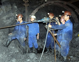 Quảng Ninh: Thưởng tết cao nhất của người lao động là 52 triệu đồng