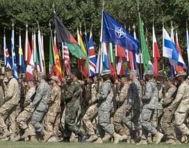 """NATO có thể bị """"khai tử"""" dưới thời ông Donald Trump"""