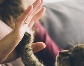 11 thói quen của những người cực kỳ dễ thương