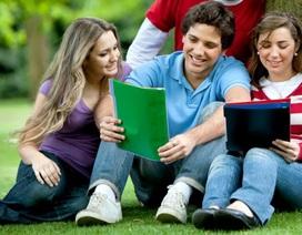 Đào tạo tiến sỹ tại Mỹ: Làm được việc, có người tuyển thì ra trường
