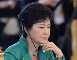 Chính phủ Hàn Quốc giải thích về việc mua hàng trăm viên Viagra