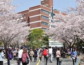 Học bổng sau đại học của chính phủ Hàn Quốc 2016