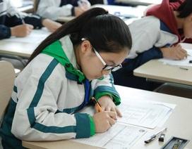 Trải nghiệm miễn phí bài thi chuẩn quốc tế cùng Language Link