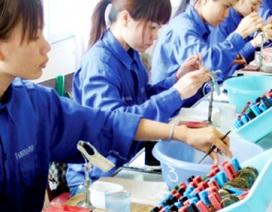 Năng suất lao động Việt Nam tăng 3 lần sau 20 năm nhưng chỉ bằng 1/3 Thái Lan