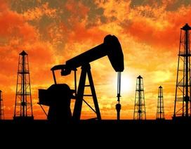 Giá dầu tăng nhanh trở lại, vượt mốc 40 USD/thùng