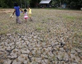 Trung Quốc xả thêm nước cứu hạn cho các nước Đông Nam Á