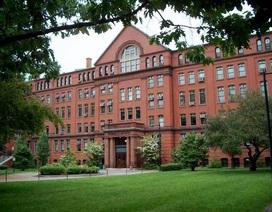 """""""Harvard, bốn rưỡi sáng"""": Sự thật có bị thổi phồng?"""