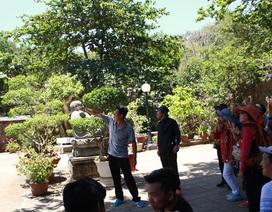 """Trục xuất hướng dẫn viên du lịch Trung Quốc hoạt động """"chui"""""""