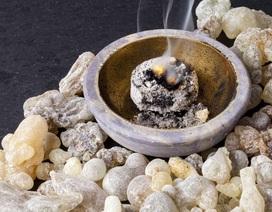 Khám phá hóa học về hương trầm để phát triển nước hoa