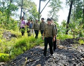 TP Uông Bí: Cộng quản - Mô hình hiệu quả bảo vệ tài nguyên