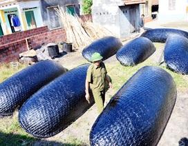 Làng nghề đan ngư cụ Hưng Học