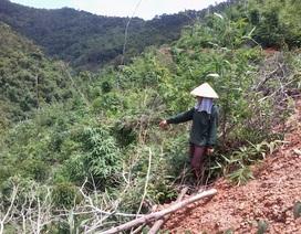 """Lạng Sơn: Bị khởi tố tội """"Huỷ hoại rừng"""" khi canh tác trên chính mảnh đất được giao"""