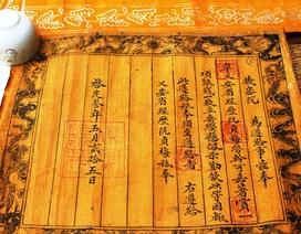 Em muốn đọc các văn tự cổ thì nên chọn ngành nào?