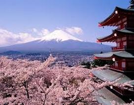 Bắt đầu triển khai dạy tiếng Nhật ở bậc tiểu học