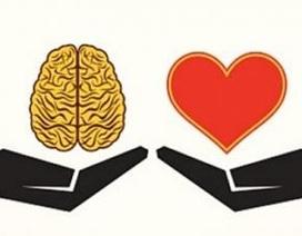 """Não bộ """"rung động"""" vì yêu"""