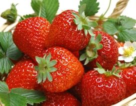 Những loại trái cây giúp phòng chống bệnh xương khớp hiệu quả