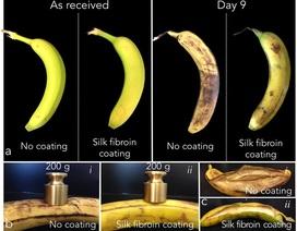 Bảo quản trái cây tươi trong một tuần mà không cần tủ lạnh