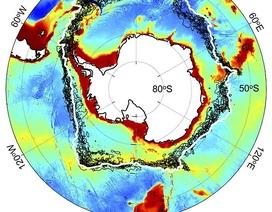 Biến đổi khí hậu ảnh hưởng đến các cực của trái đất