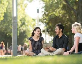 Tặng 500 AUD khi nhập học Đại học UNSW, Australia