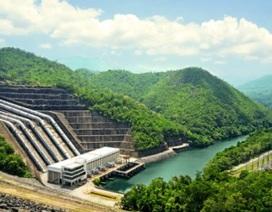 Các đập thủy điện trên thế giới có thể gây tuyệt chủng các loài