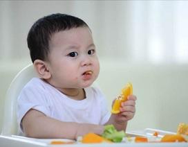 Phát triển đúng cách 5 giác quan cho bé ở độ tuổi ăn dặm