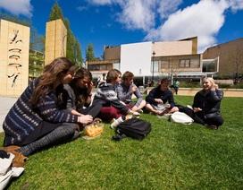 Đại học Tasmania, Australia: Thân thiện và học bổng 25%