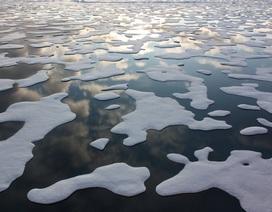 Đối với Bắc cực, 2016 là năm tồi tệ nhất từ trước đến nay