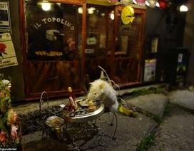 Nhà hàng dành cho chuột ở Thụy Điển
