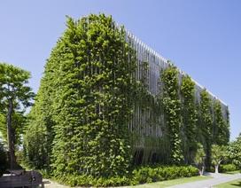 KTS Võ Trọng Nghĩa vừa đoạt 3 giải thưởng kiến trúc quốc tế