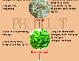 Infographic: 10 loại rau củ 'tắm' hóa chất nhiều nhất (phần 1)