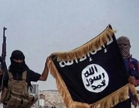 IS nhận trách nhiệm vụ tấn công khủng bố Brussels