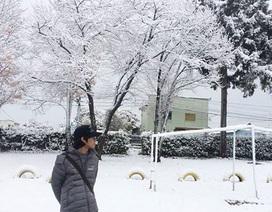 Đón mùa Đông đến sớm ở Hokkaido