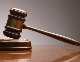 Liên đoàn Lao động Đồng Nai kiện 6 đơn vị nợ BHXH ra tòa