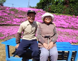 Cụ ông 2 năm trồng hàng ngàn bông hoa cho người vợ mù lòa