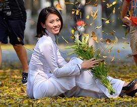 Thiếu nữ thả dáng cuốn hút trên thảm lá vàng ươm