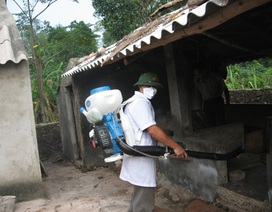Giải pháp về cách phòng, chống bệnh cúm lợn